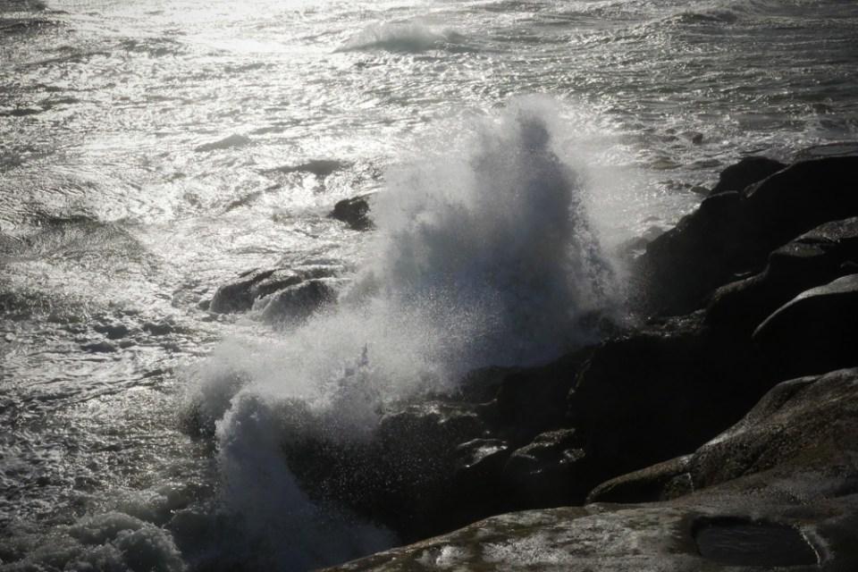 muriwai rocks-1260165