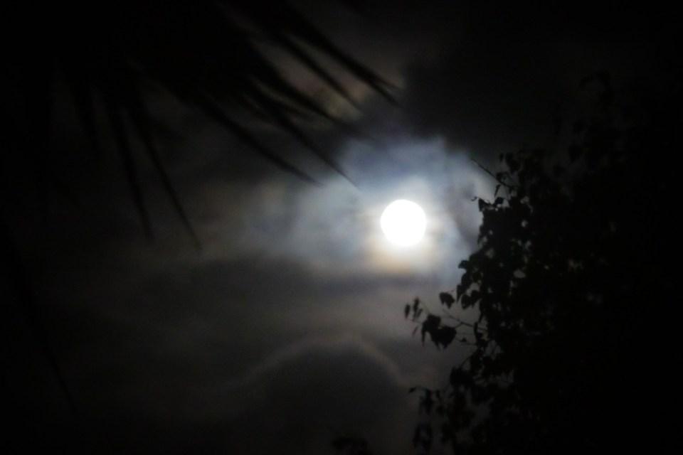 moon-magic-1290369