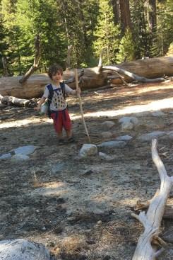 hiking-stick-practice