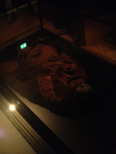 The woman from Huldremose, preserved in a bog and died in the Iron Age (between 160 BC and 340 AD)