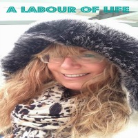 A Labour of Life blog button