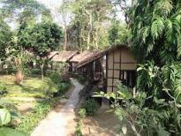 Chitwan1