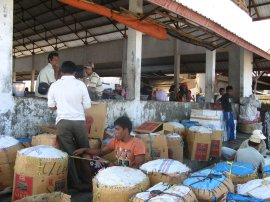 Another glimpse of the richness of Indonesia. Pasar Ikan by the harbor