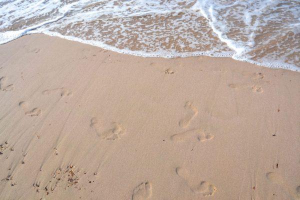 sable-calvi-1-e1489050184433-600x400
