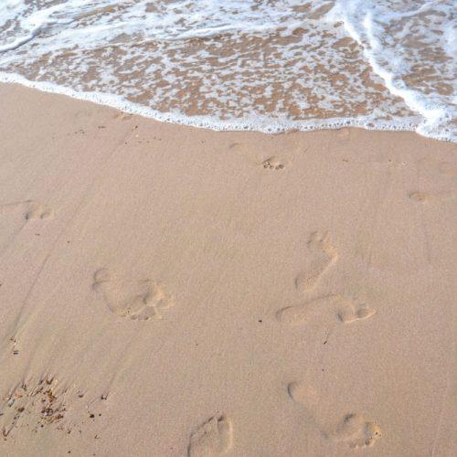 sable-calvi-1-e1489050184433