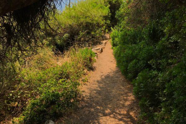 sentier-littoral-cap-dantibes--e1497947021381-600x400