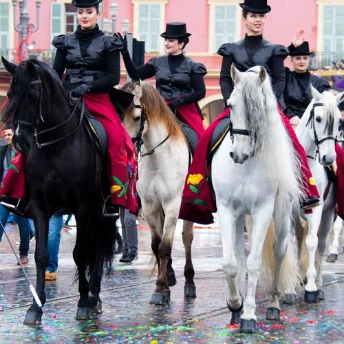chevaux-bataille-de-fleurs-from-corsica