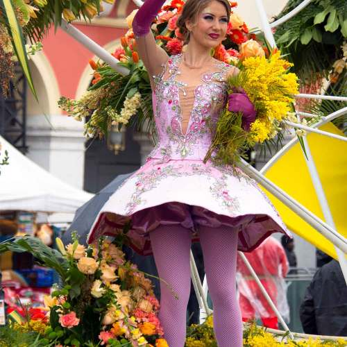 mimosa-fleurs-carnaval-corsica-to-nizza