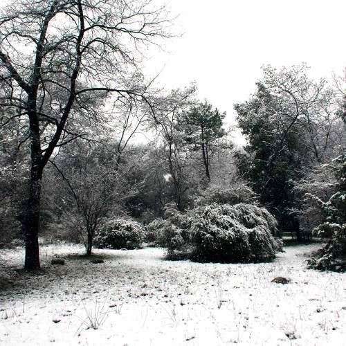 neige-sophia-antipolis-fevrier-2018