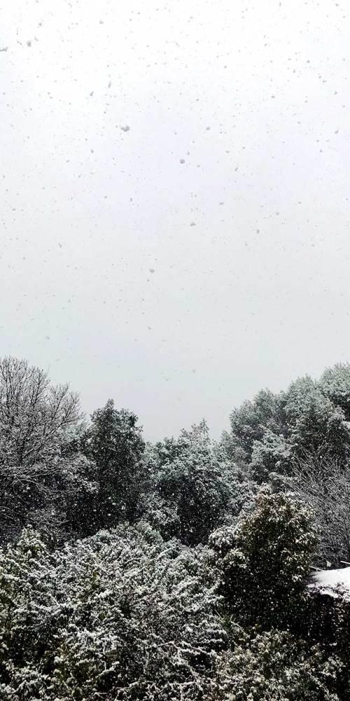 sophia-fevrier-2018-neige