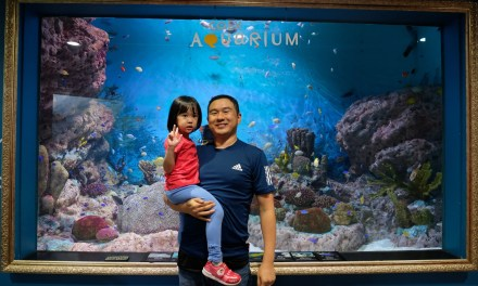 Day 6 : Coex Aquarium