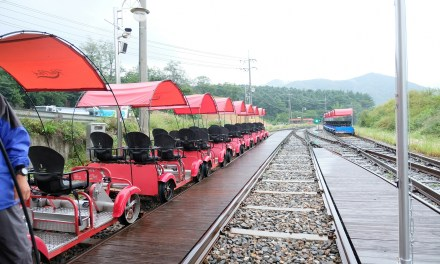 Day 12 : Gangchon Rail Bike