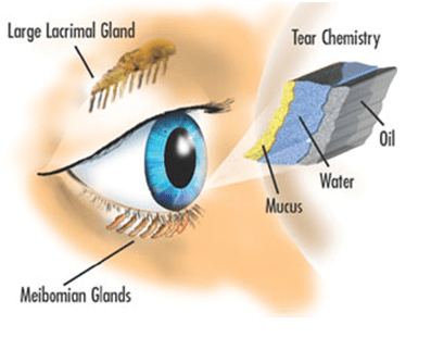 treatments from dry eyes