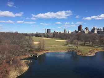 Central Park - A slice of space in the concrete jungle