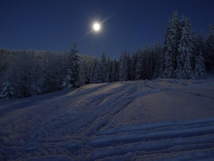 winter-1291479_1920