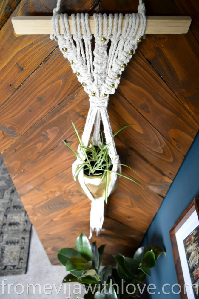 DIY macrame plant hanger and plant