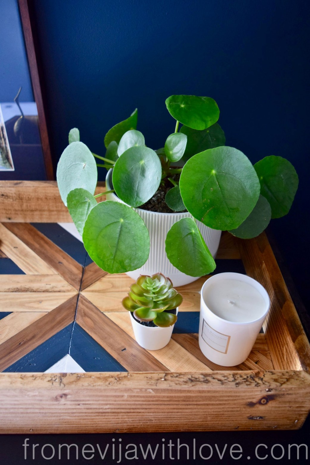 Plant in a pot styled with Decorative Geometric Wood Tray