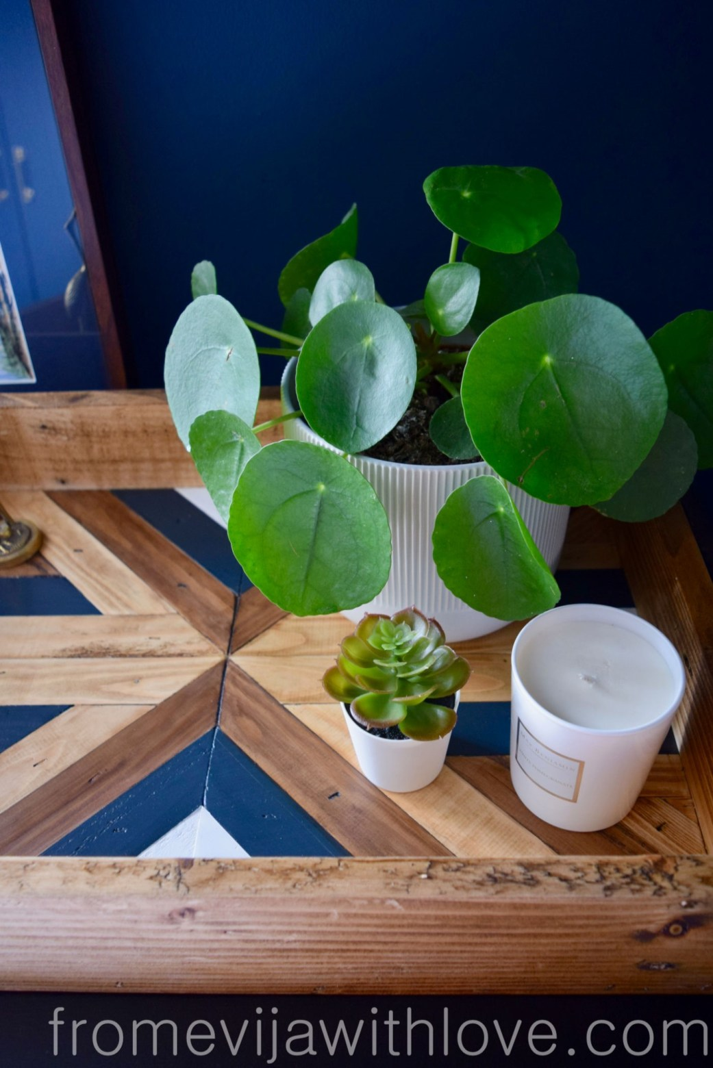Decorative Geometric Wood Tray and Plants
