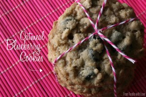 Oatmeal Blueberry Cookies