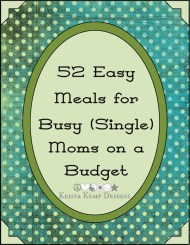 Recipe e-Book-Fantastic meals on a budget