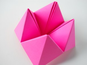Cootie Catcher 20