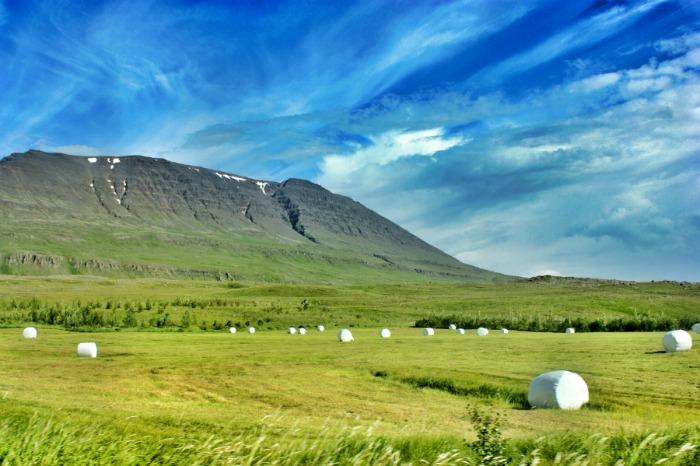 Skagafjordur Iceland