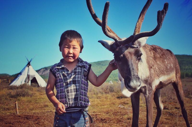 Tsaatan people mongolia reindeer herders