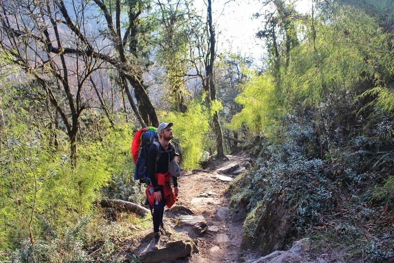 Annapurna Base Campl Nepal Hike 4
