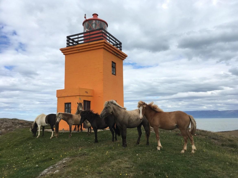 Skagafjörður lighthouse