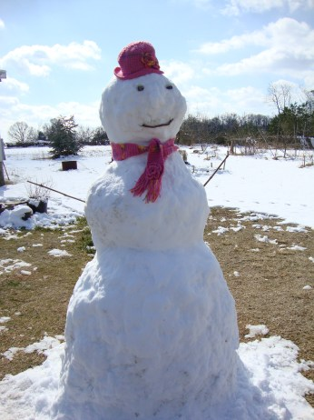Snowperson sporting hat and scarf combo knitted by Mom
