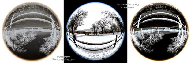 Wantagh, New York, USA. February 20, 2019. Scene of split rail wood fence and beyond at Mill Pond Park on Long Island. 180 degree fisheye view, 3 digital versions.