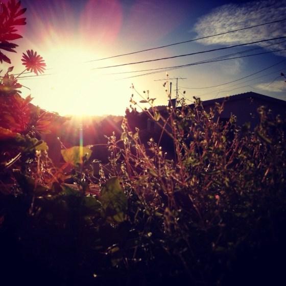 6. Janeiro fora, acrescenta uma hora - ja diz o ditado e bem...as tardes comecam a ficar mais longas, e é tão bom chegar a casa e ter sol na varanda