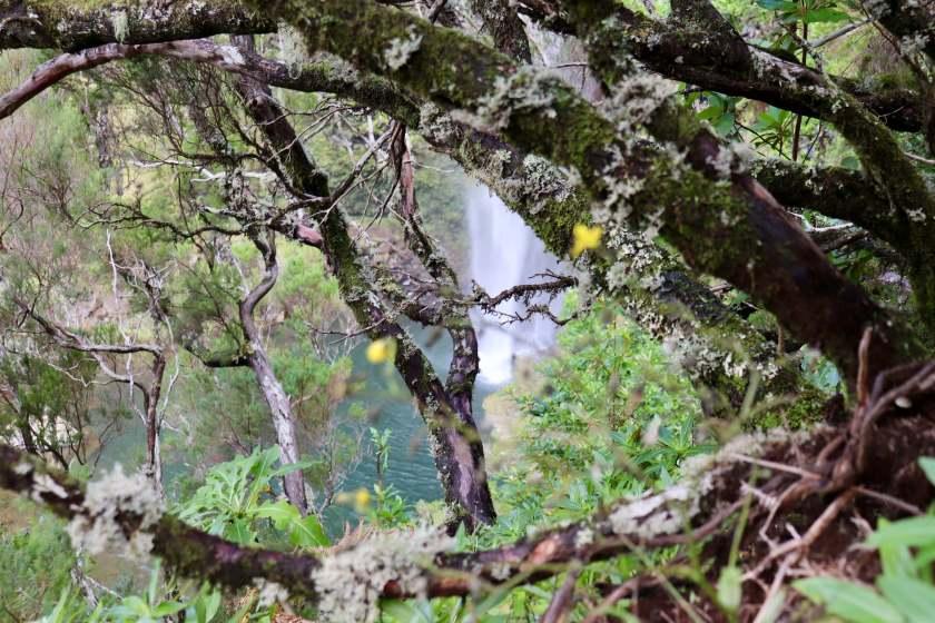 Lagoa do Vento, Madeira