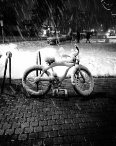 Polar Biking