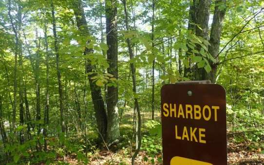 When All Camping is Family Camping – Sharbot Lake