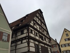 Traditional timber framed buildings