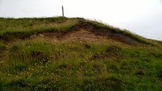 Sand martin nests at Portnahaven (Photo by Elina Mäntylä)