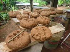 cob test bricks (or biscuits)
