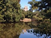 Swamp Fromswamptosummit