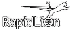 <h5>RapidLion, The South Africa International Film Festival</h5>