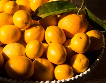 Citrus from Peacock Ranch
