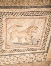 Mosaic floor in a Terrace House