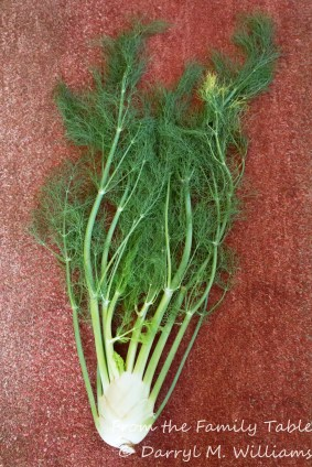 Whole fennel from the farmers market