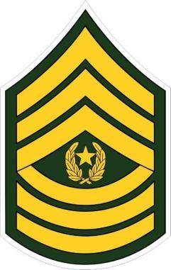 command_sergeant_major_csm.jpg