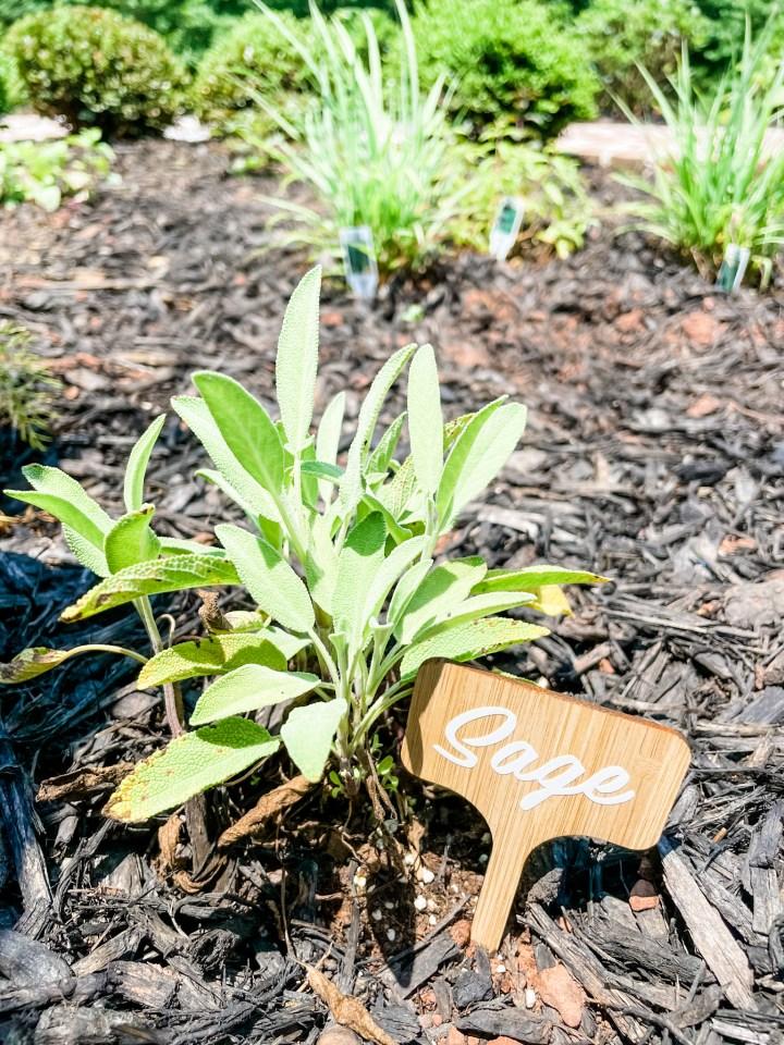 Sage garden marker