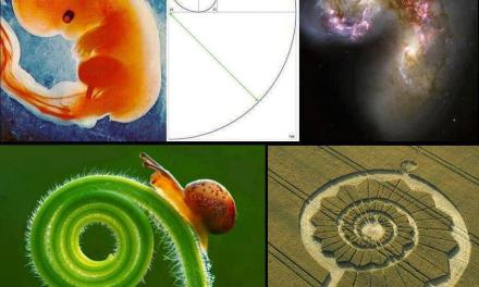 Approaching Infinity: Applying Fibonacci and Phi to the Concept of Enlightenment
