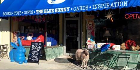 Indie Spotlight: Blue Bunny Books & Toys, Dedham MA