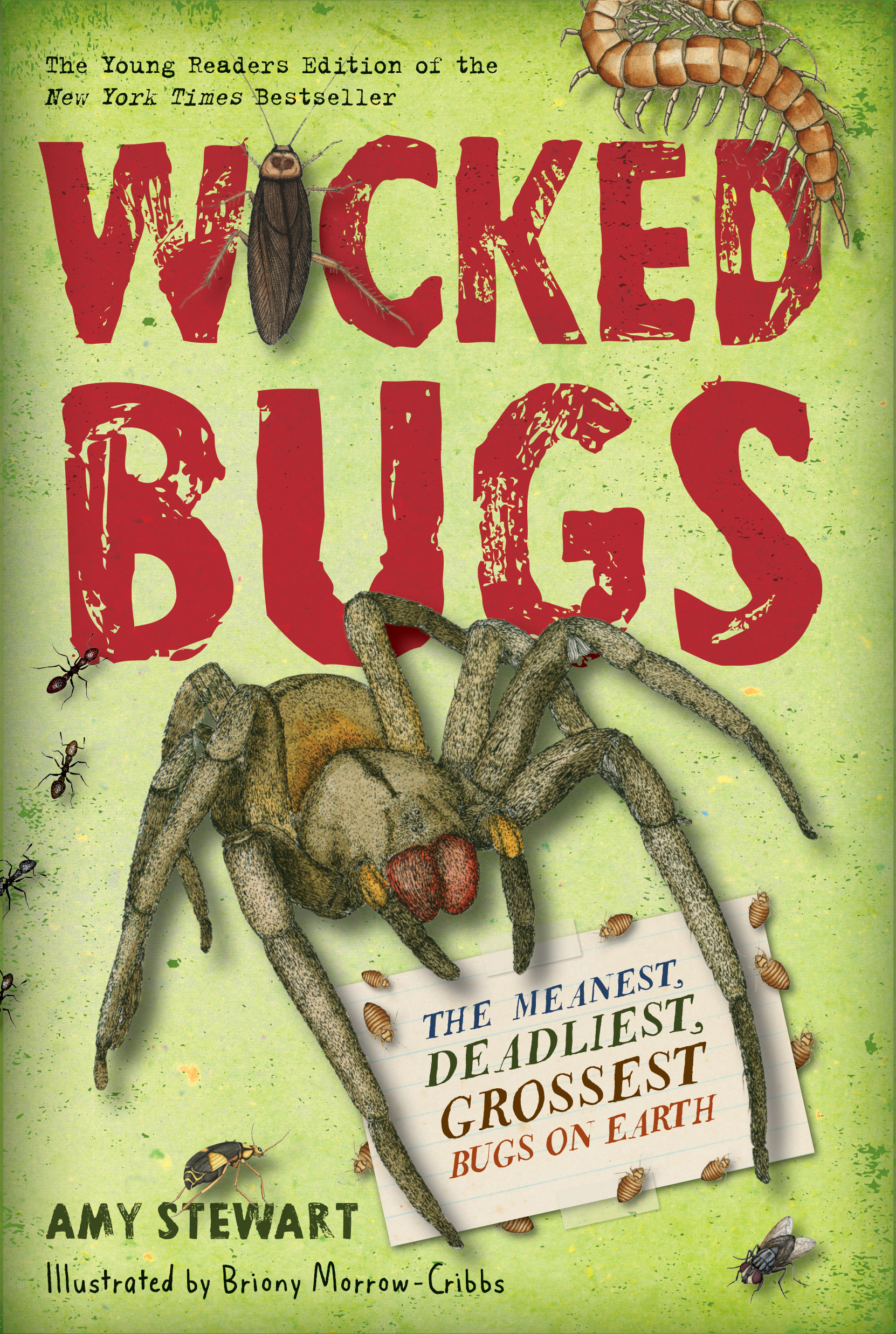 Interview with Author Amy Stewart and a Wicked Bug Giveaway
