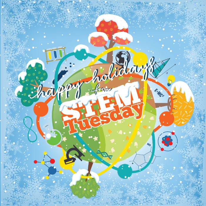 STEM Tuesday--A Partridge in a Pear Tree and other Birds this Holiday Season-- In the Classroom