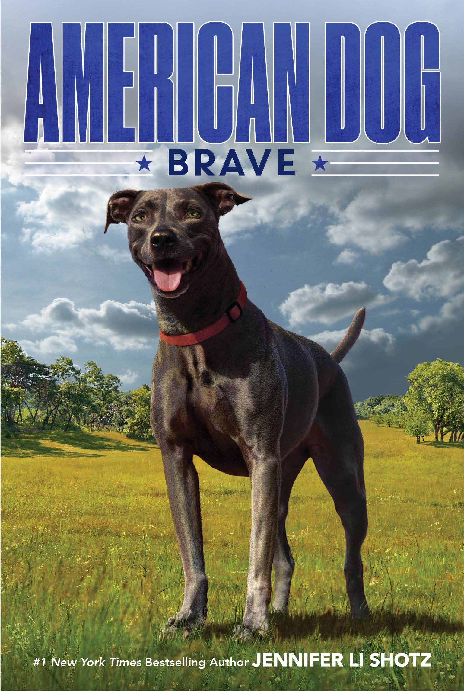 American Dog: Brave: An Interview with Author Jennifer Li Shotz